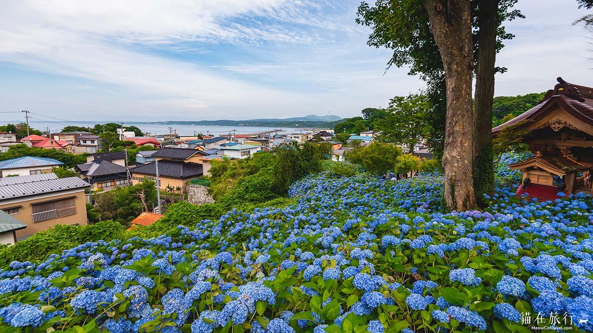 雲昌寺 - 望向日本海
