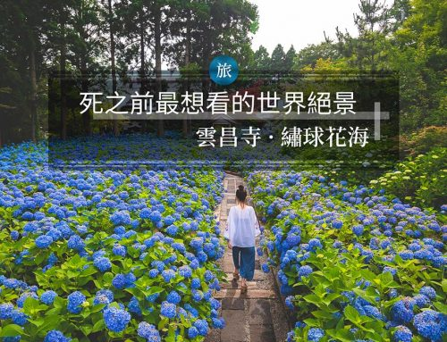 雲昌寺・繡球花海 – 死之前最想看的世界絶景 【日本・秋田】